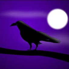 黒鴉🐲もっと歌いたいのユーザーアイコン