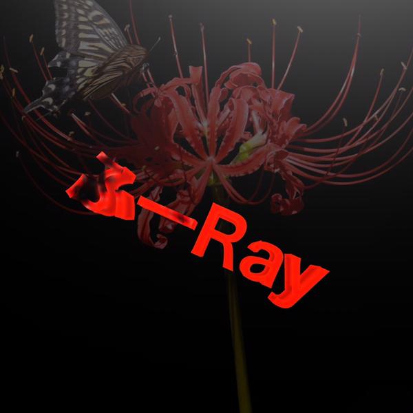 ふーRayのユーザーアイコン