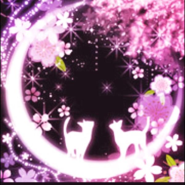 月蝶羽(アゲハ)のユーザーアイコン