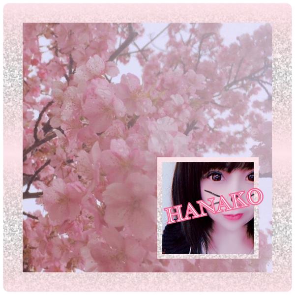 💐花子💐しょのユーザーアイコン