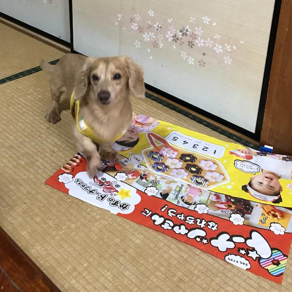 れおん☆のユーザーアイコン