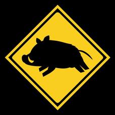 豚面は7月まで社畜のユーザーアイコン