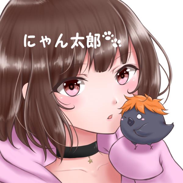 にゃん太郎のユーザーアイコン