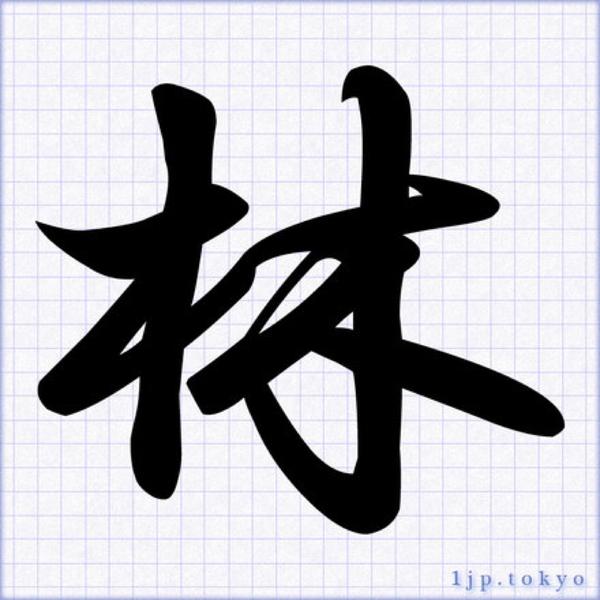hayashiのユーザーアイコン