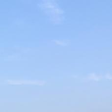 夏みかんのユーザーアイコン