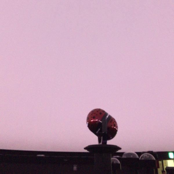雨笠のユーザーアイコン