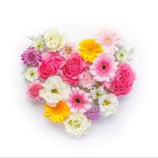 ° ͙❁ fleur ❁*.のユーザーアイコン