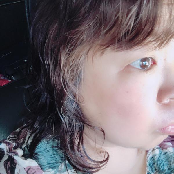 タコネコ🐙@nana友さん欲しいなのユーザーアイコン