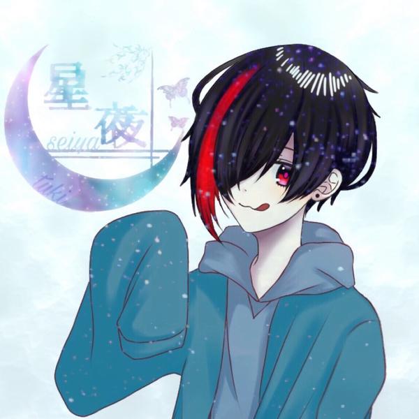 星夜麗華*̣̩⋆̩*アイシテの証明のユーザーアイコン