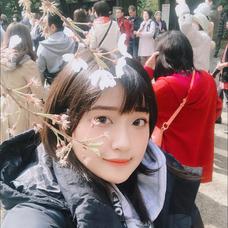 Sakiriのユーザーアイコン