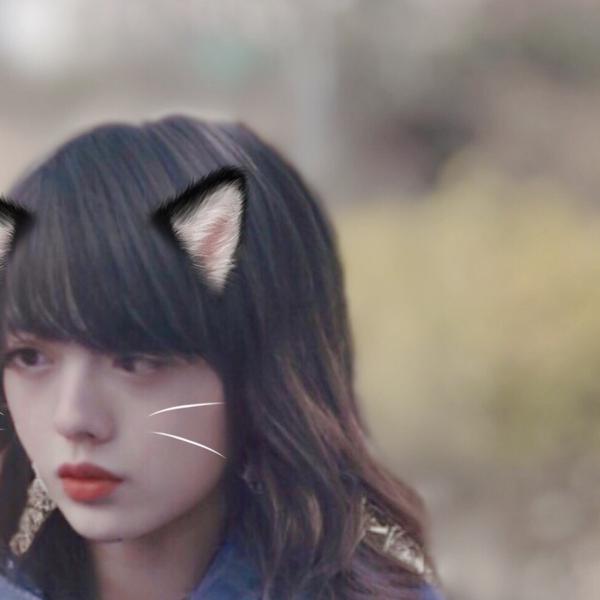 ユリ🐈's user icon