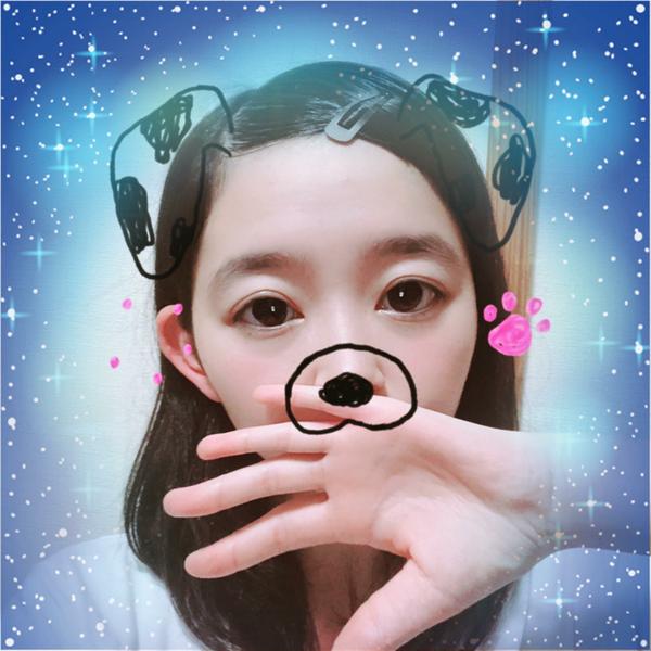 夜桜美月姫のユーザーアイコン
