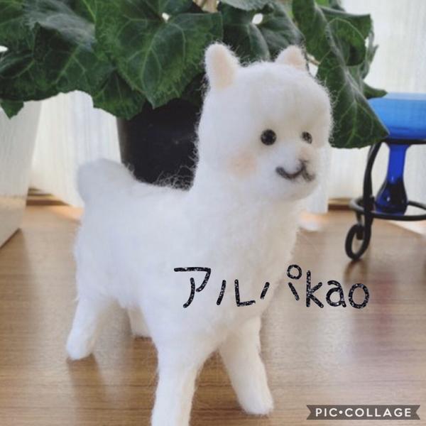 kaoのユーザーアイコン