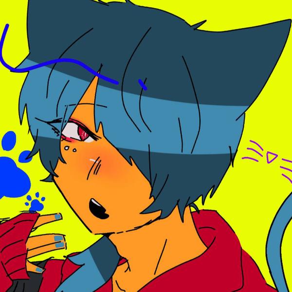 かちゃ猫のユーザーアイコン