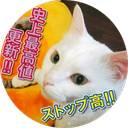 咲茉のユーザーアイコン