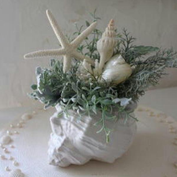 🐚  白い貝殻  🐚のユーザーアイコン
