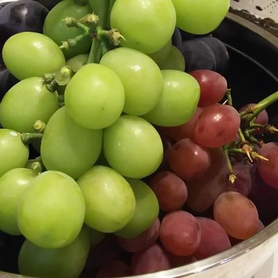 Grapesのユーザーアイコン