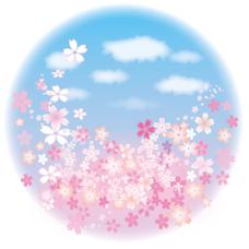 桜 (サブ垢)'s user icon