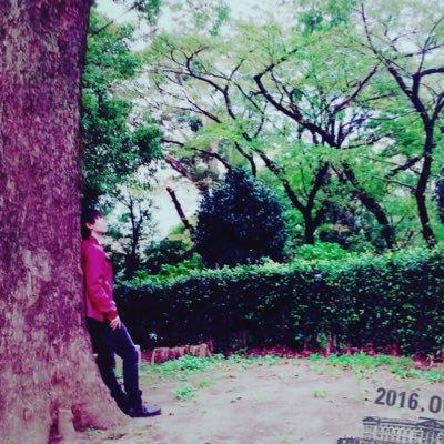 茶白's user icon