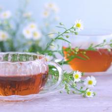 午後の紅茶花伝のユーザーアイコン