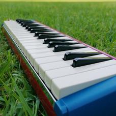 mayo🌿鍵盤ハーモニカ吹きのユーザーアイコン