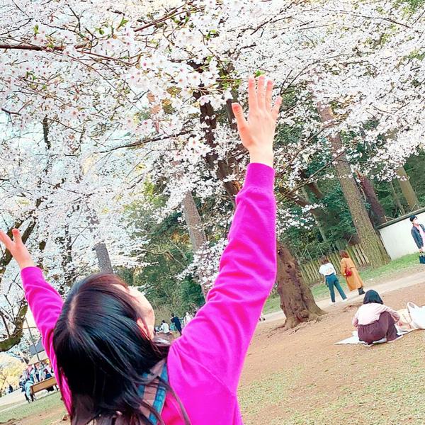 胡蝶🦋@Mayのユーザーアイコン
