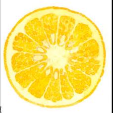 fruitbucket事務所のユーザーアイコン