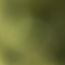 もぬ's user icon