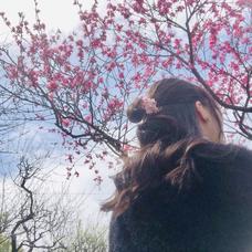 汐奏*yunaのユーザーアイコン