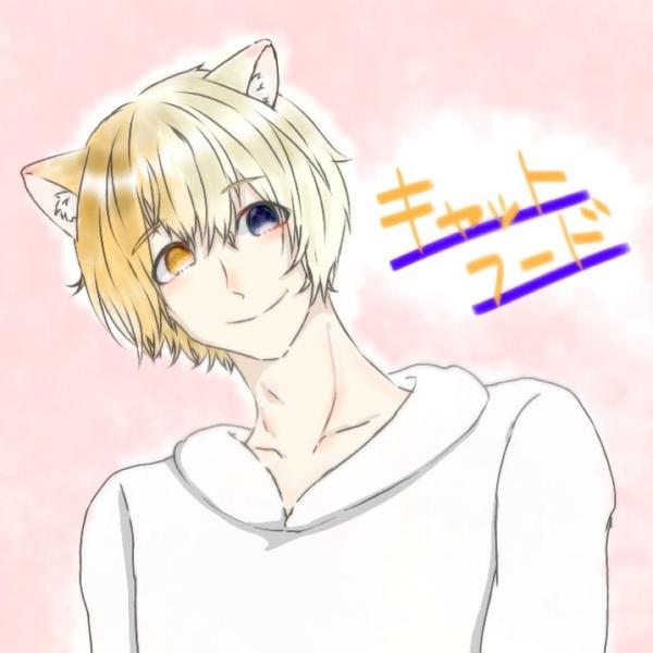 猫飯のユーザーアイコン