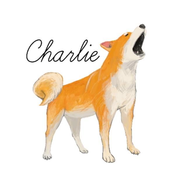 チャーリィのユーザーアイコン