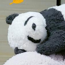 ばっすー's user icon