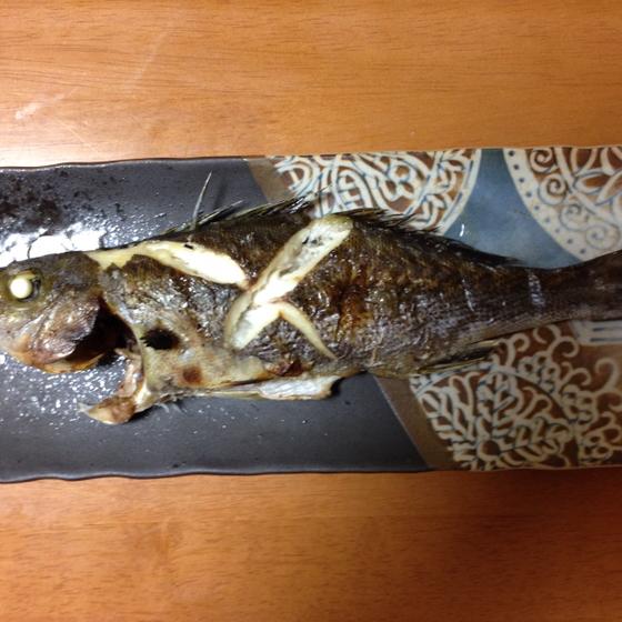 焼き魚(多忙にて休止中)のユーザーアイコン