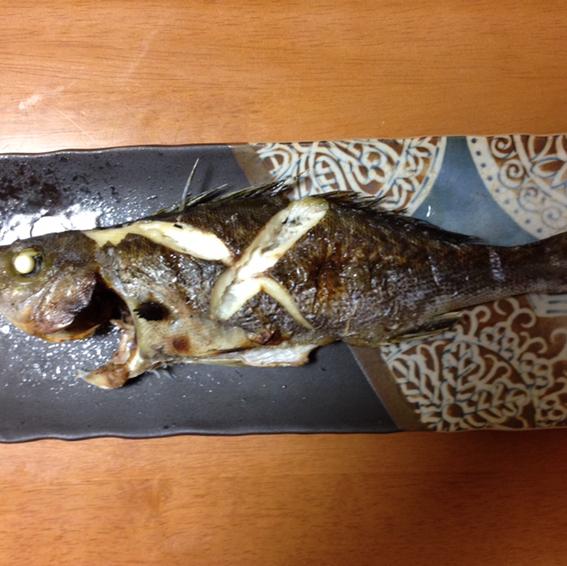 焼き魚(青鬼)のユーザーアイコン
