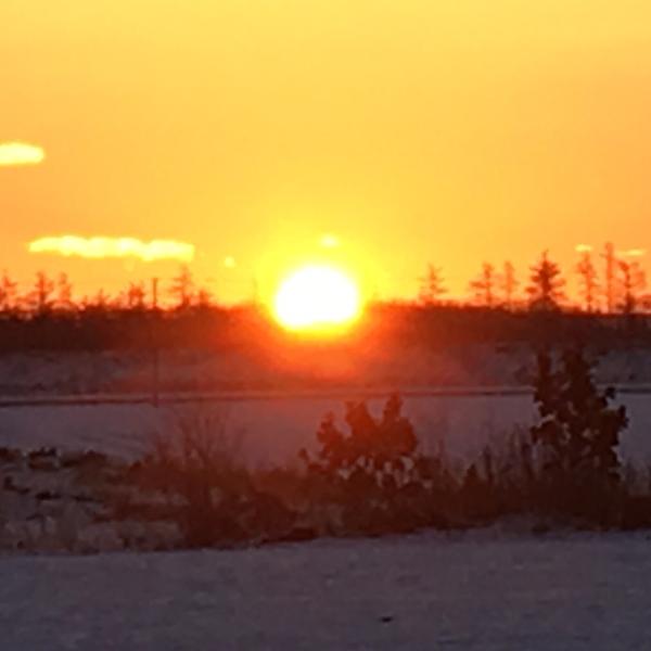茜色の黎明のユーザーアイコン