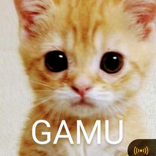 ♥GAMU♥のユーザーアイコン
