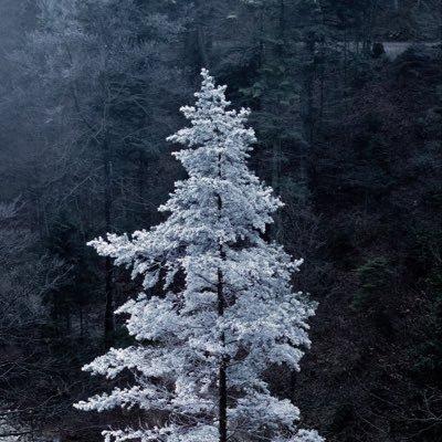 氷(ひょう)のユーザーアイコン