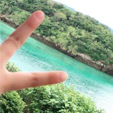 夏みかん's user icon