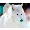 .YuRu.のユーザーアイコン