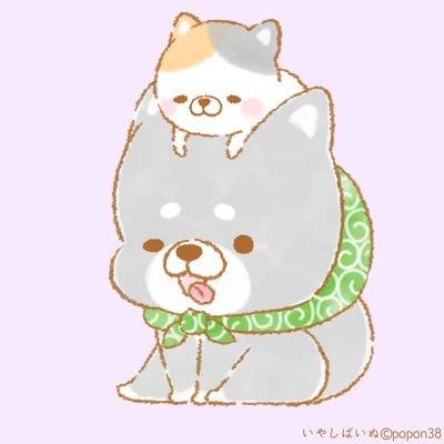 Inuyamaのユーザーアイコン