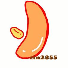 zin2355のユーザーアイコン