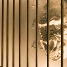 囚われのウホミングのユーザーアイコン