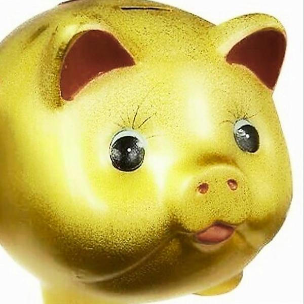 どすこい🐷貯金豚仕様🐷のユーザーアイコン