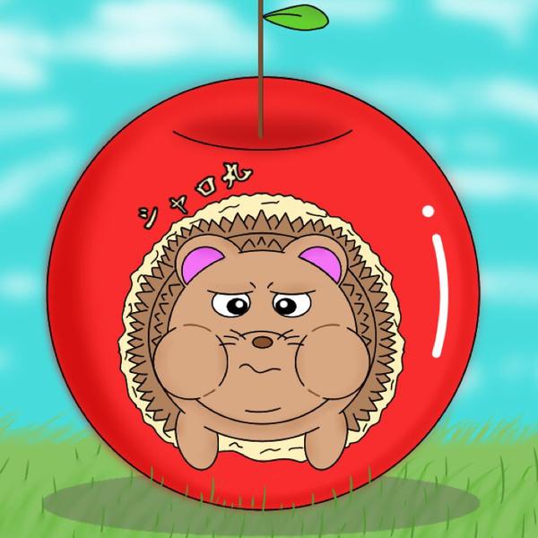 シャロ丸のユーザーアイコン