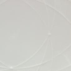 whiteのユーザーアイコン