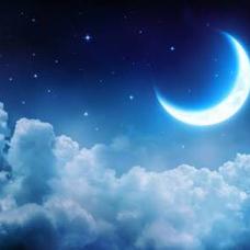 月崎♔累♔🐾🦝のユーザーアイコン
