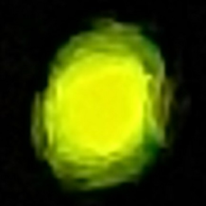 ケロケロ2号  蛍の光です。のユーザーアイコン