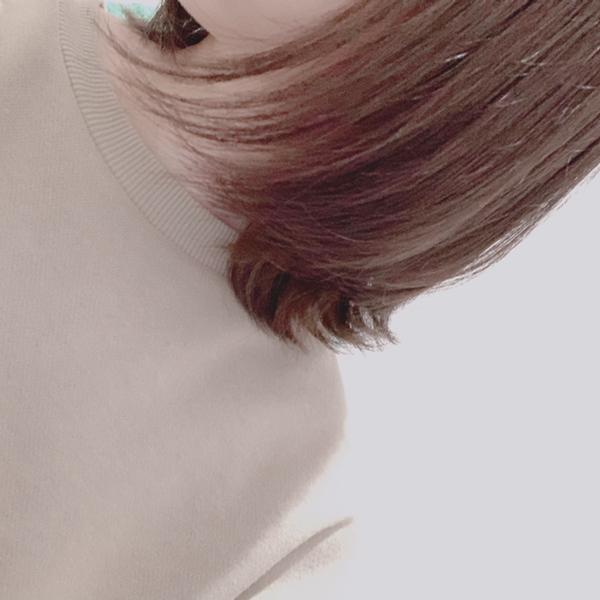 saku.のユーザーアイコン