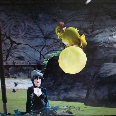椿姫のユーザーアイコン