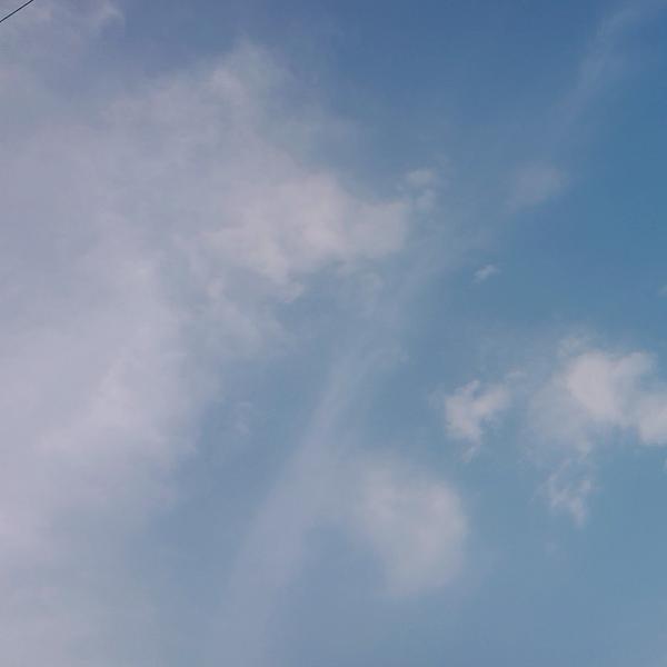 月姫(つき)のユーザーアイコン